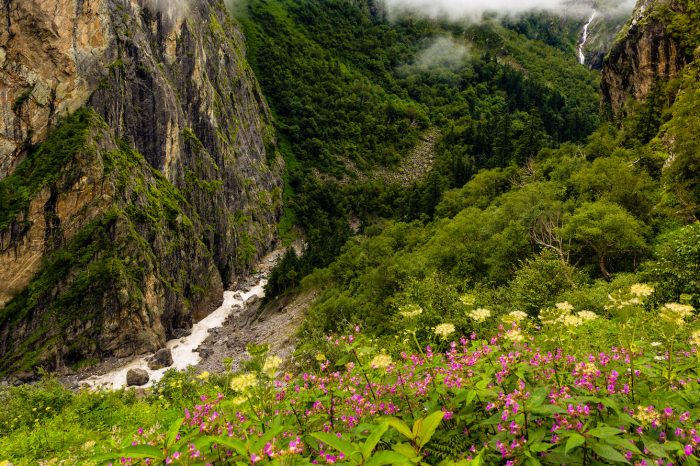 Valley of Flowers Trek – 6 Days
